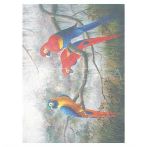 extra buyuk kolay transfer 1604 k 598630 20 B -Artebella Art & Craft Hobi ve Sanat Ürünleri