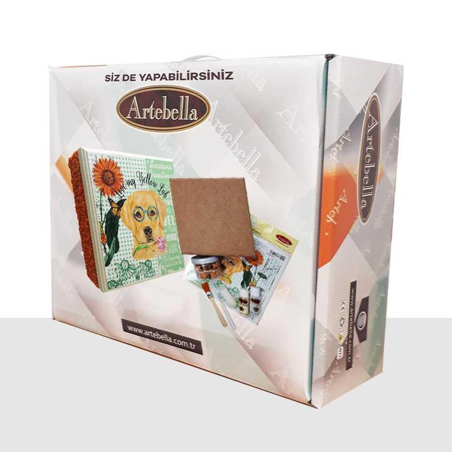 syst0006 sizde yapabilirsiniz set arkadas 612059 14 B -Artebella Art & Craft Hobi ve Sanat Ürünleri